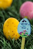 image of laying eggs  - Easter egg hunt sign against small speckled easter eggs - JPG