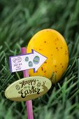 pic of laying eggs  - Easter egg hunt sign against small yellow easter egg - JPG
