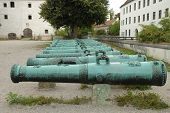 picture of cannon  - Antique ornamented cannon barrels standing in row - JPG