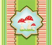 stock photo of toadstools  - Colorful - JPG