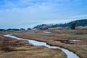 picture of oasis  - Landscape on a Tuscany little town on the hill with the canal of a natural oasis - JPG