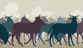 foto of wildebeest  - EPS8 editable vector cutout illustration of a herd of adult wildebeest - JPG