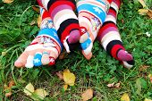 Socks in autumn.