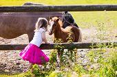 Little Girl Feeding Baby Horse On Ranch poster