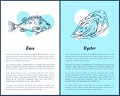 Hand Drawn Seafood Set Sea Bass And Oyster Graphic. Decorative Icons Of Fish And Mollusk In Sketch V poster