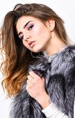 Luxury Fur Accessory. Fashion Trend Concept. Winter Fashionable Wardrobe. Silver Fur Vest Fashion Cl poster