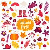 Autumn Design Elements. Leaves, Berry, Hedgehog, Pumpkin, Mushroom, Snail, Acorn, Briar, Rowan, Bugs poster