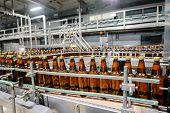 Beer Bottling Conveyor In Brewing Factory, Beer Bottles On Conveyor Belt poster