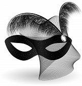 image of mummer  - on an white background is a carnival black half mask decorated with veil and feathers - JPG
