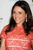LOS ANGELES - SEP 21:  Julia Louis-Dreyfus arrives at the Primetime Emmys Performers Nominee Recepti