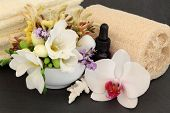 Freesia, orchid, honeysuckle and lavender flower blossom, aromatherapy spa bottle, towels and ex fol