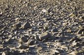 Selective Focus Rocky Beach Background