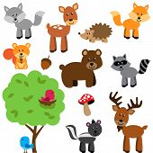 stock photo of raccoon  - Vector Set of Cute Woodland and Forest Animals - JPG