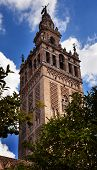 Giralda Bell Tower From Orange Garden Cathedral Of Saint Mary Of The See Spire Weather Vane Seville