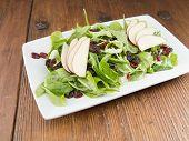 Vers gastronomisch ruwe spinazie salade