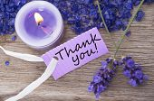 stock photo of wishing-well  - a recreation background with a purple label on which stands thank you - JPG