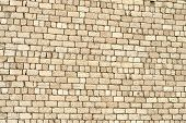 Wall Of Brick Shell.