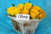 Sorry note with yellow roses  in vintage wooden flower box on blue background