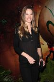 Hilary Swank at the