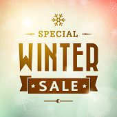 Winter Special Sale Vintage Vector Typography Poster