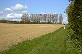 Ein Spaziergang auf dem Land