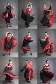 Flamenco Collage