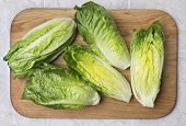Romain lettuce on kitchen board