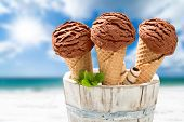 Close up of chocolate ice creams with mint and wafer decoration