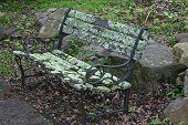 Mossy Park Bench