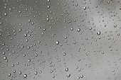 Water Droplets Closeup
