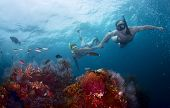 Couple snorkeling over coral reef