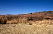 Harsh Dry Winter Landscape In Orange Free State, South Africa