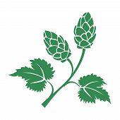 image of brew  - Green vector silhouette hops icon with leaves and cone like flowers used in the brewing industry to add the bitter taste to beer - JPG