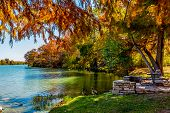 image of guadalupe  - Bright Fall Foliage Surrounding the Guadalupe River - JPG