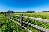 A Wide Angle View of Texas Farmland with Wildflowers and Old Fence