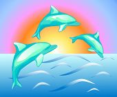 Illustration Of The Dolphins