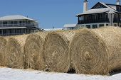 South Walton Beach, Fl - May 9: Hay Bales On White Sand Beach Ready For Oil Spill Cleanup