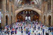 Main hill in National History Museum, is one of the most favourite museum for families in London.