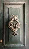 picture of seahorse  - Antique door - JPG