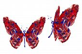 Red Blue White Paint Made Butterfly Set