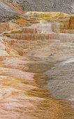 Colorful Travertine