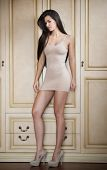 Charming young brunette woman in tight fit short nude dress leaning against wooden wall