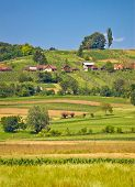 Agricultural Countryside Landscape Vertical View