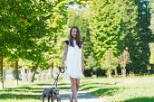 stock photo of greyhounds  - Young attractive girl dressed elegantly walking with two greyhounds in the park - JPG