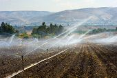 image of douche  - Irrigating farmland in the Jordan valley in Israel between the Sea of Galilee and Beit She - JPG
