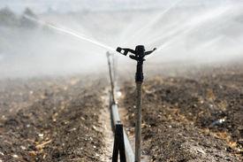 foto of douching  - Irrigating farmland in the Jordan valley in Israel - JPG