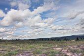 stock photo of arctic landscape  - Beautiful summer tundra landscape in Lapland Finland - JPG