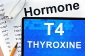 picture of hormone  - Papers with hormones list and tablet  with words  Thyroxine  - JPG