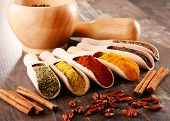 foto of spice  - Variety of spices on kitchen table - JPG