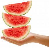 Watermelon 5